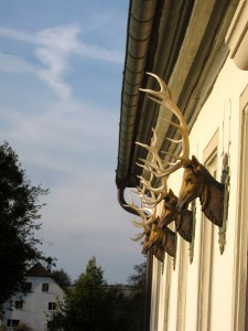 Hunting Lodge Facade