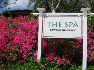 Sense Spa at Little Dix Bay by Susan Manlin Katzman