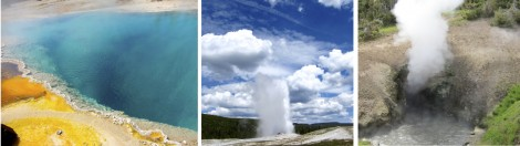 College of Yellowstone National Park by Susan Manlin Katzman