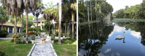 Bonnet House and Garden College by Susan Manlin Katzman