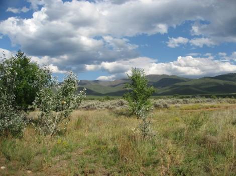 Taos Landscape by Susan Manin Katzman