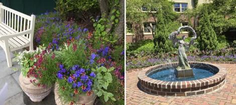 American Club Garden Collage