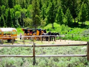 Corral at Roosevelt Lodge
