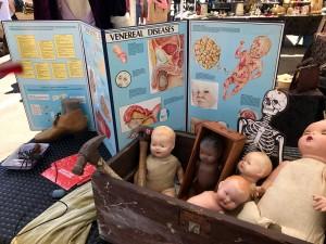 Oddities at Rose Bowl Flea Market by Susan Manlin Katzman