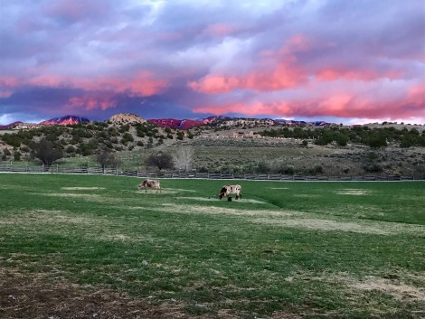 Edge end of Sunset by Susan Manlin Katzman